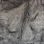 Canyon Gris
