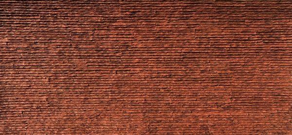 Pangolin Stego Taş Panel