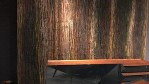 Wood Shell Fiber Ahşap Görünümlü Duvar Panelleri Uygulamaları